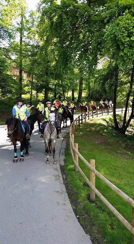 Finlake Riding Centre Torquay A Local Guide