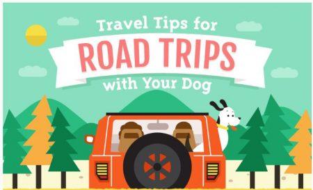 dog-friendly-travels